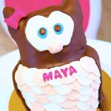 Gâteau Chouette 3D