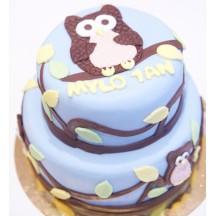 Gâteau Chouette - 2D