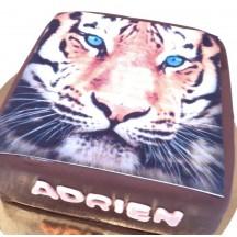 Gâteau Tigre