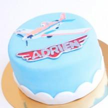 Gâteau Planes
