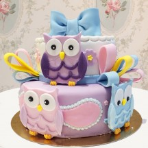 Gâteau Chouettes et Noeuds