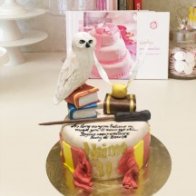 Gâteau Harry Potter Livres et Edwige